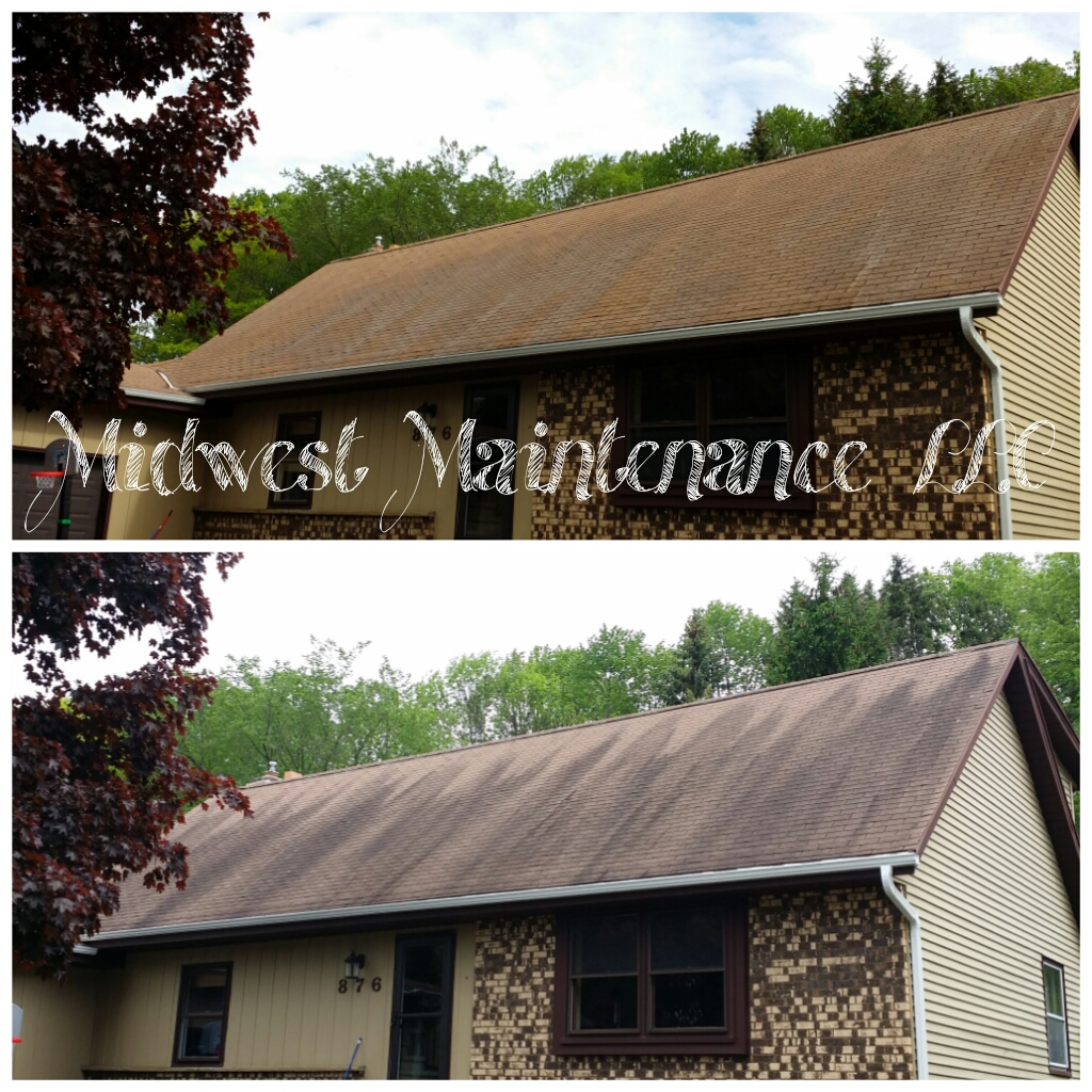 roof cleaning, black roof stains